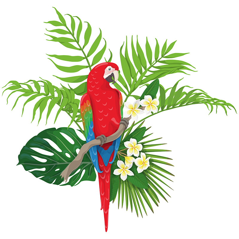Naklejka Amazońska ara