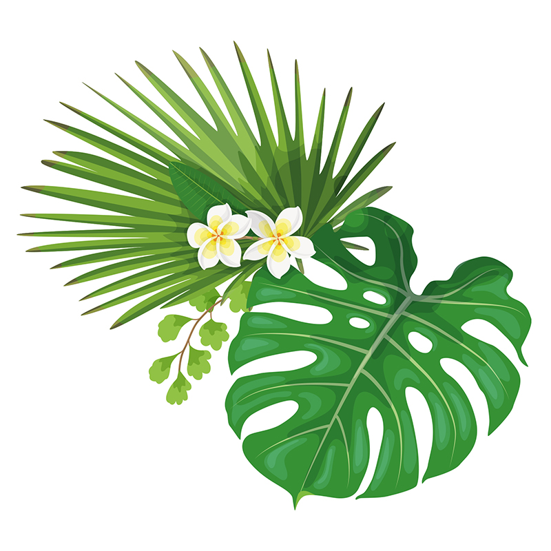 Naklejka Harmonia tropików