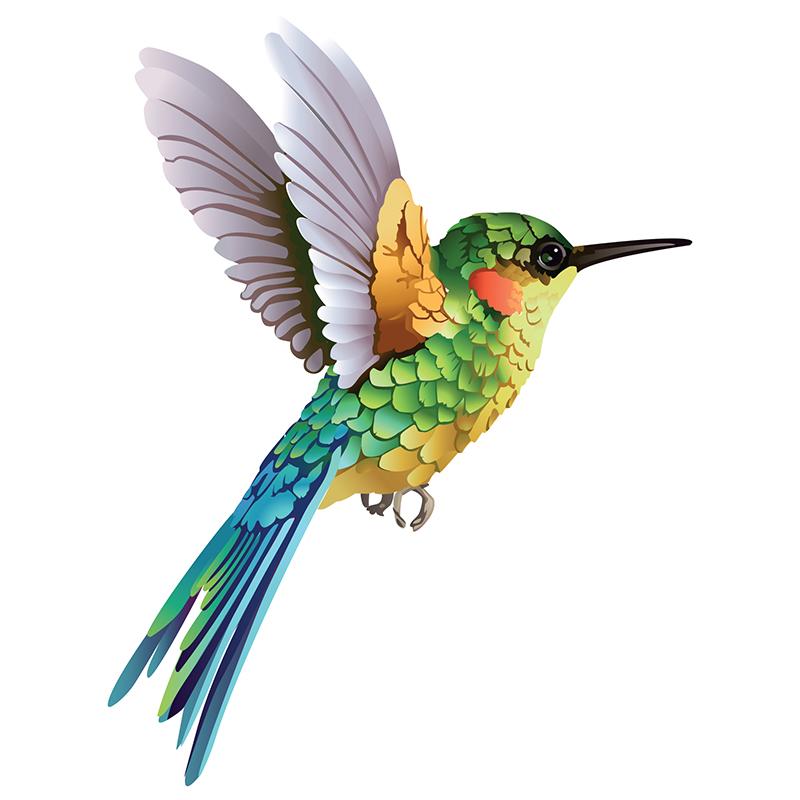 Naklejka Ptasi kolaż